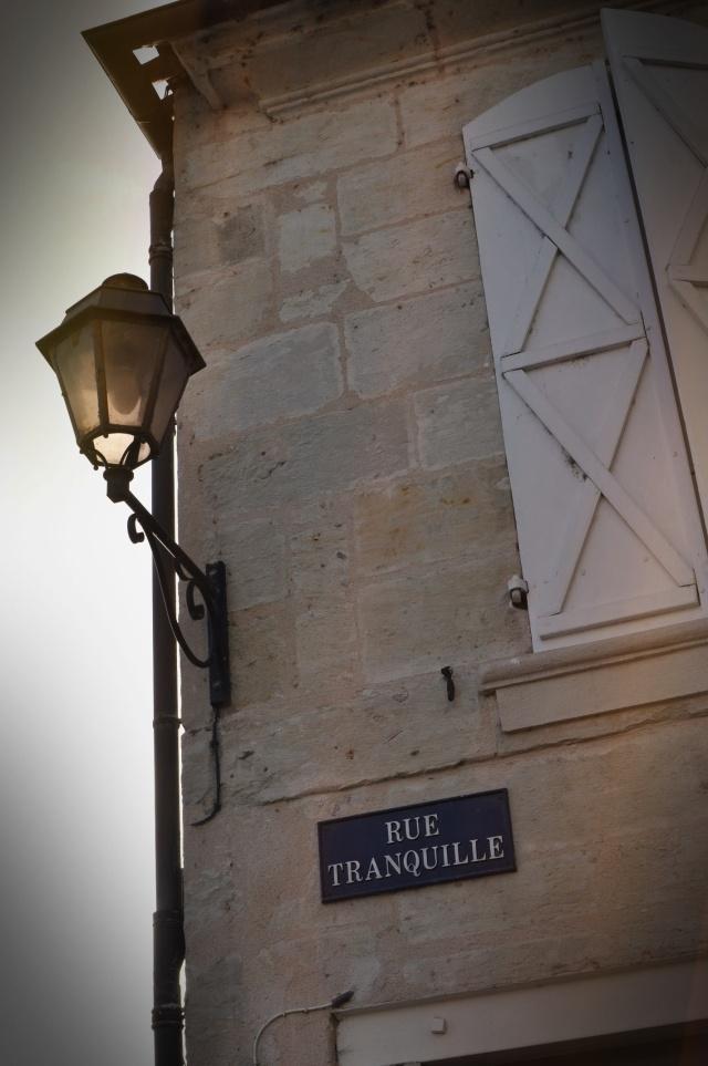 Truffe du Périgord 11-Périgueux