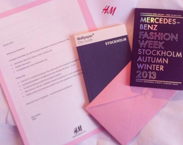 H&M Design Award 2013-Diary Fashion Blog 1