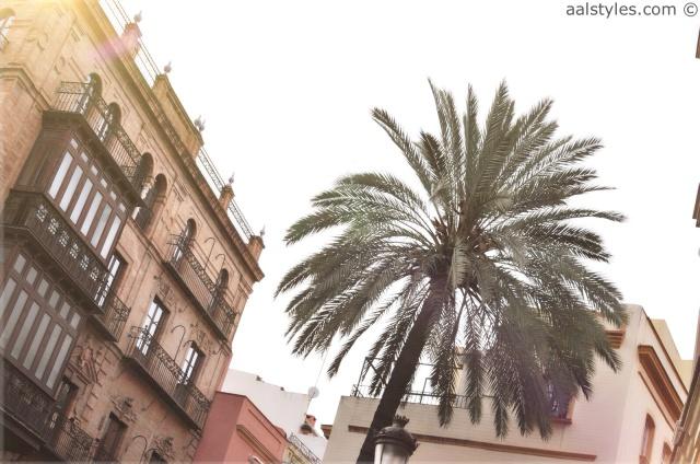 Séville-EME Catedral Hotel-Comptoir des Cotonniers-8