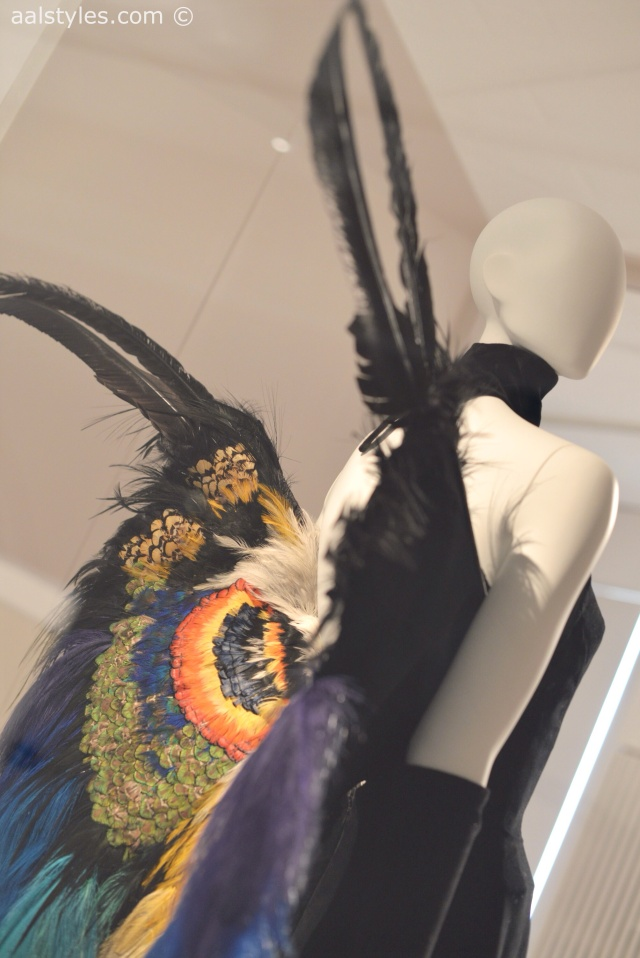 Birds of Paradise-MoMu-Antwerp 4