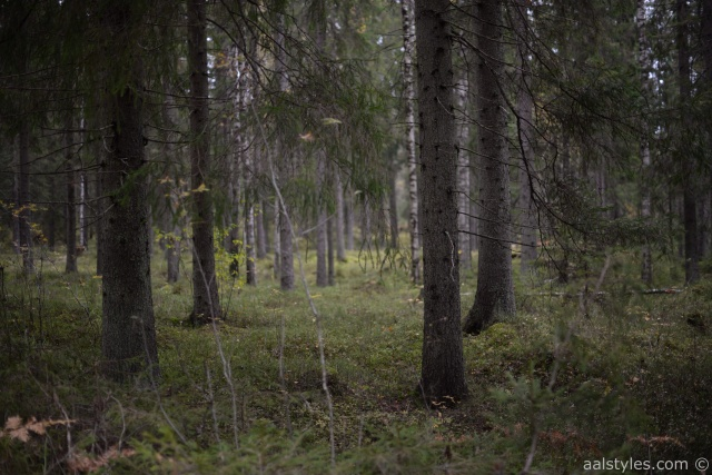 Citytrip Helsinki-Blog voyage