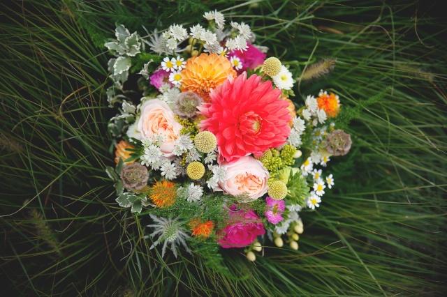 4-Violette et Pierre-1582-Wild Flower Fairy-Jehanne Moll