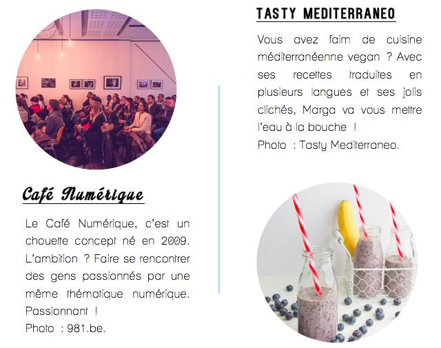 Café Numérique Liège-Vivre de son blog-7