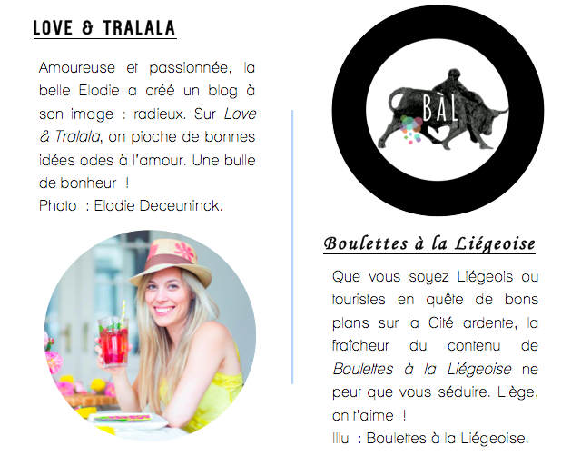 Café Numérique Liège-Vivre de son blog-9